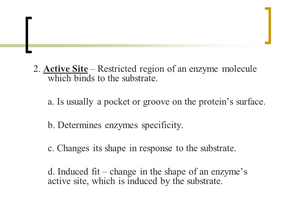2. Active Site – Restricted region of an enzyme molecule which binds to the substrate.