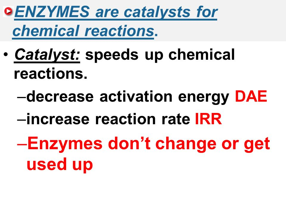 2.5 Enzymes ENZYMES are catalysts for chemical reactions.