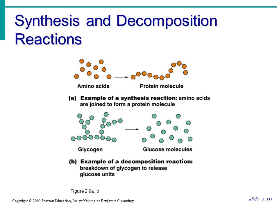 Synthesis and Decomposition Reactions Slide 2.19 Copyright © 2003 Pearson Education, Inc.