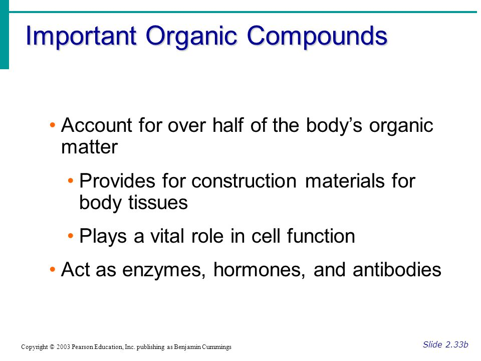 Important Organic Compounds Slide 2.33b Copyright © 2003 Pearson Education, Inc.