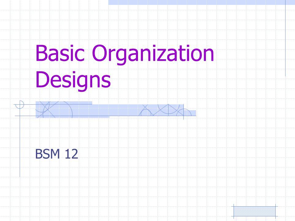 Basic Organization Designs BSM 12