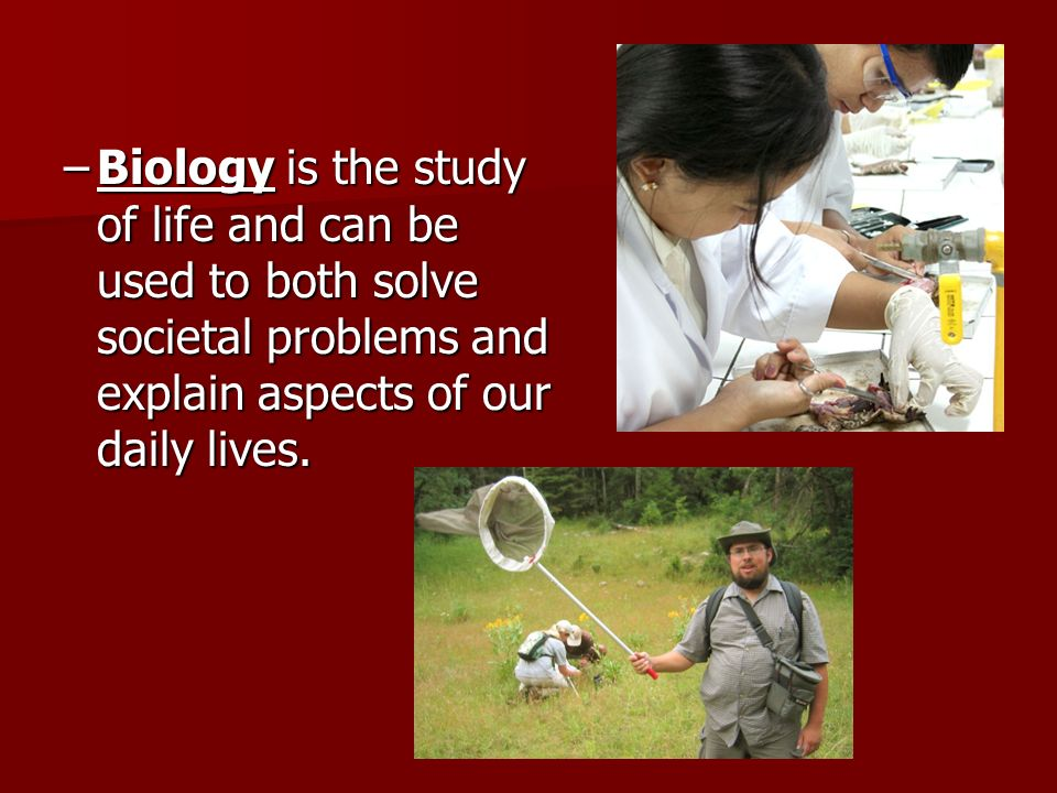 –Biology is the study of life and can be used to both solve societal problems and explain aspects of our daily lives.