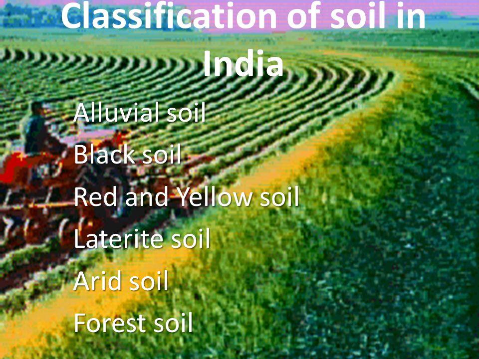 Classification of soil in India Alluvial soil Black soil Red and Yellow soil Laterite soil Arid soil Forest soil