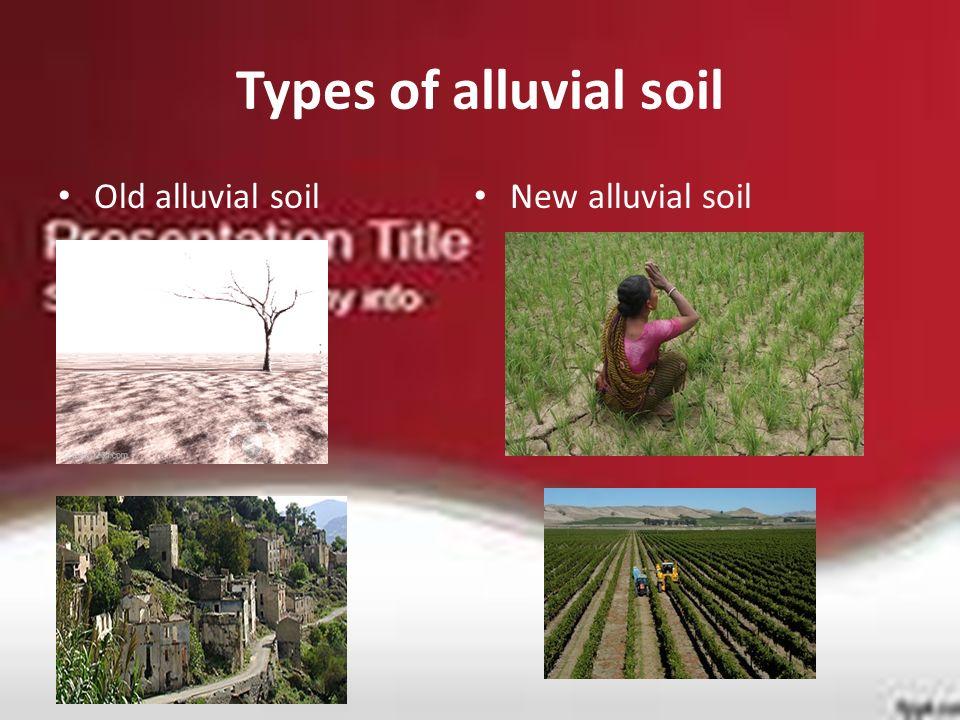Types of alluvial soil Old alluvial soil New alluvial soil