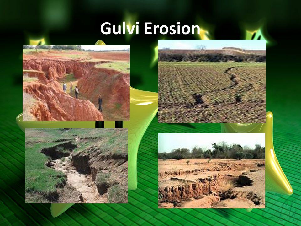 Gulvi Erosion