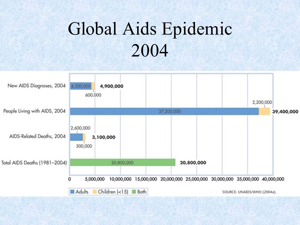 Global Aids Epidemic 2004