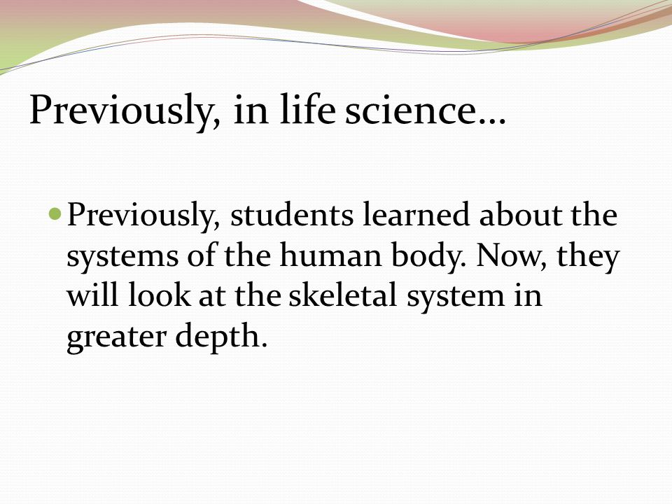 the skeletal system eq: how does the skeleton function, and how do, Skeleton