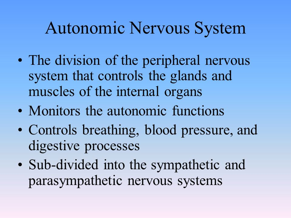 Autonomic Nervous System The division of the peripheral nervous system that controls the glands and muscles of the internal organs Monitors the autonomic functions Controls breathing, blood pressure, and digestive processes Sub-divided into the sympathetic and parasympathetic nervous systems