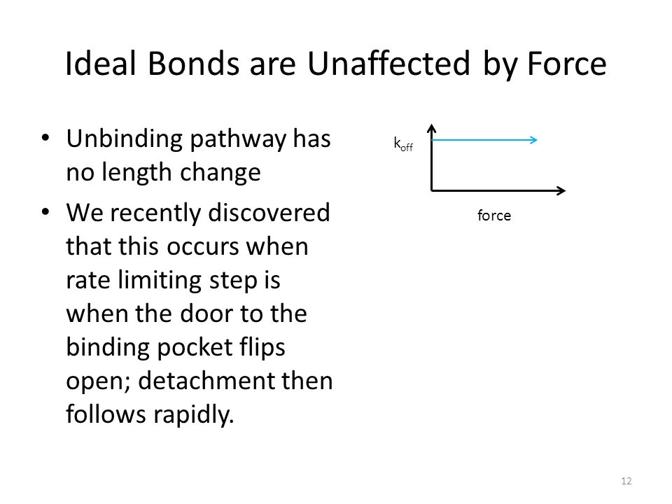 Ideal Bonds are Unaffected by Force Unbinding pathway has no length change We recently discovered that this occurs when rate limiting step is when the door to the binding pocket flips open; detachment then follows rapidly.