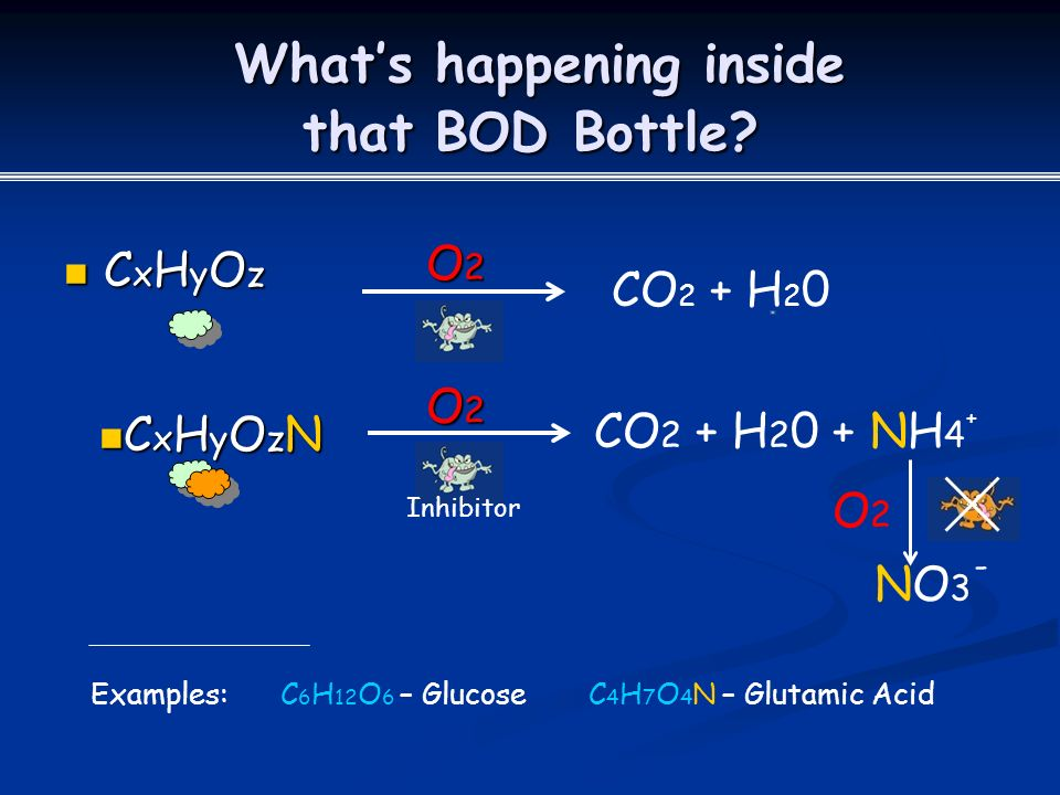 What's happening inside that BOD Bottle.What's happening inside that BOD Bottle.