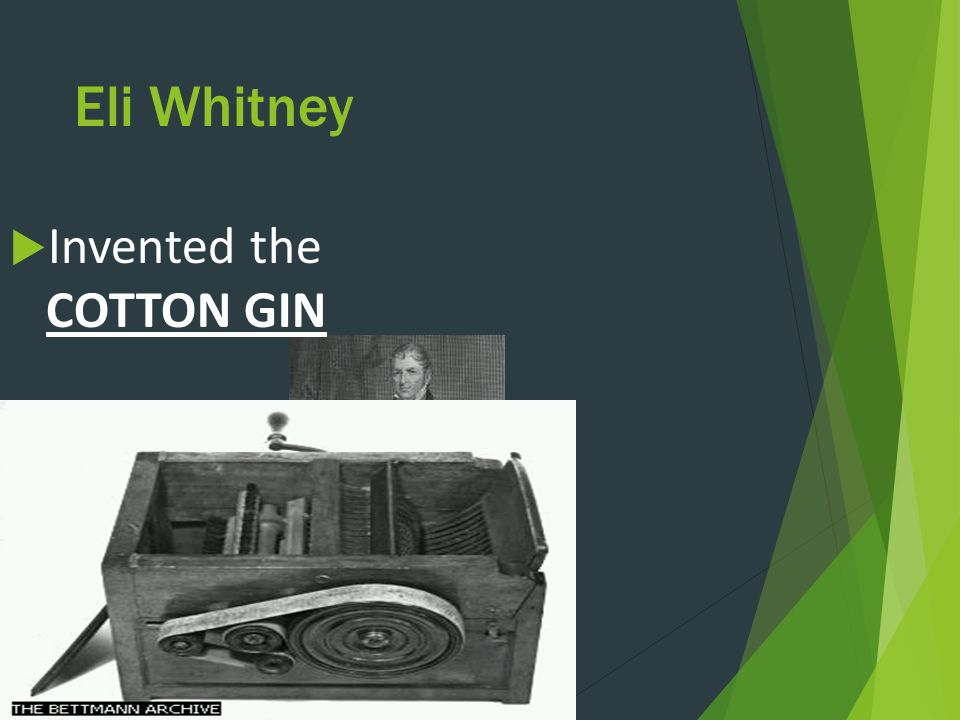 Eli Whitney  Invented the COTTON GIN