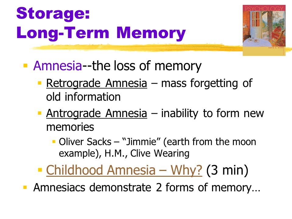 Memory  Short-Term Memory  activated memory that holds a few ...