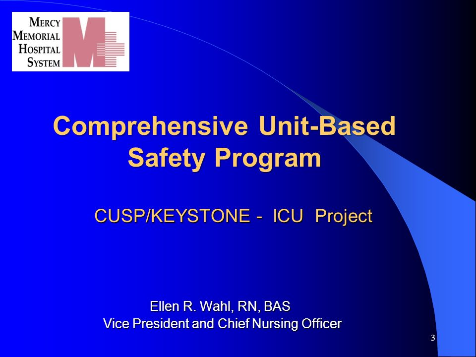 Chief Nursing Officer 3. Comprehensive Unit Based Safety Program  CUSP/KEYSTONE . Photo Gallery