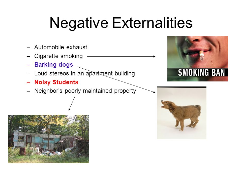 Negative Externalities –Automobile exhaust –Cigarette smoking –Barking dogs –Loud stereos in an apartment building –Noisy Students –Neighbor's poorly maintained property