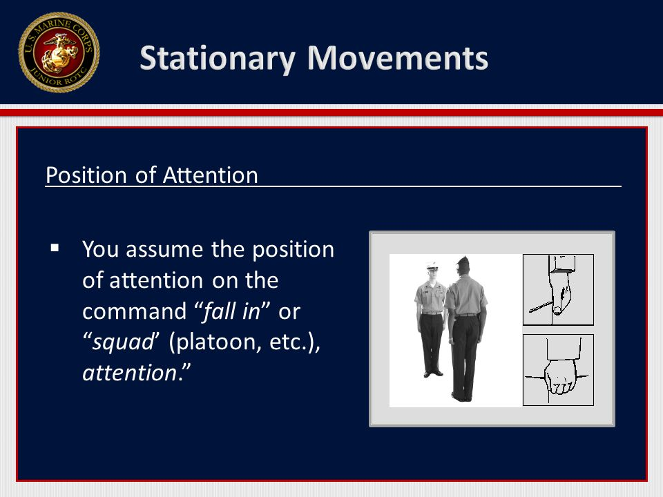 Position of Attention  You assume the position of attention on the command fall in or squad' (platoon, etc.), attention.