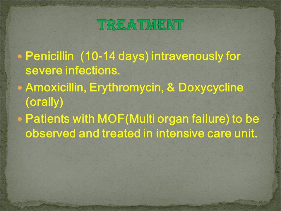 amlodipine viagra