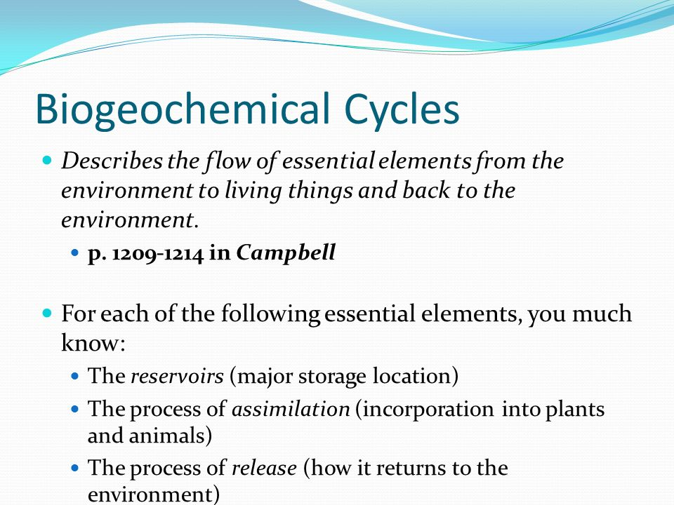 Biogeochemical Cycles Describes the flow of essential elements from the environment to living things and back to the environment.