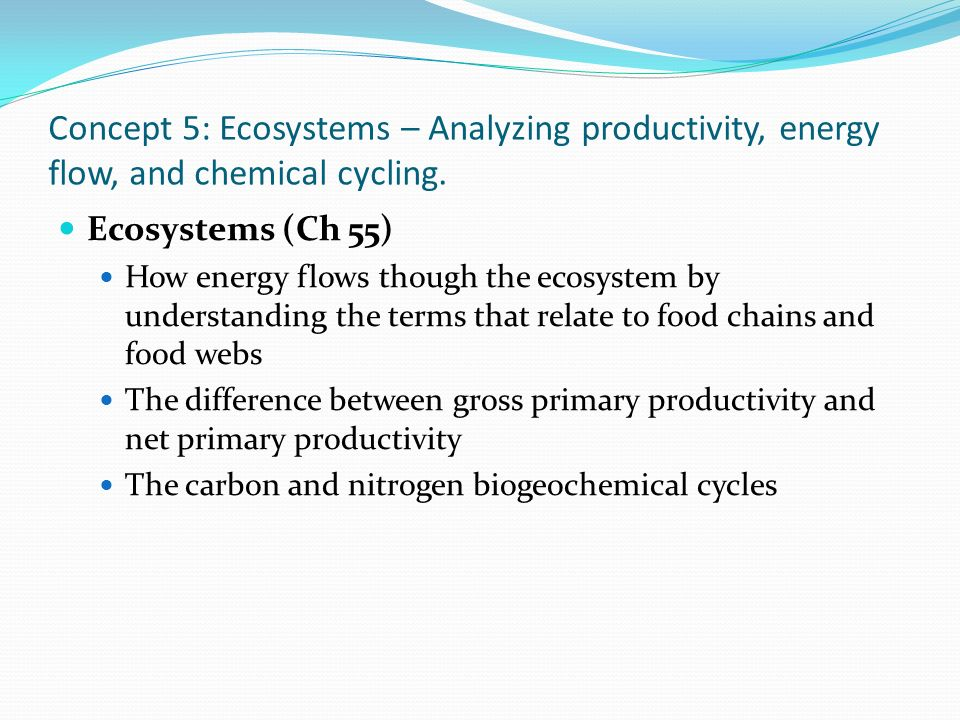 Concept 5: Ecosystems – Analyzing productivity, energy flow, and chemical cycling.