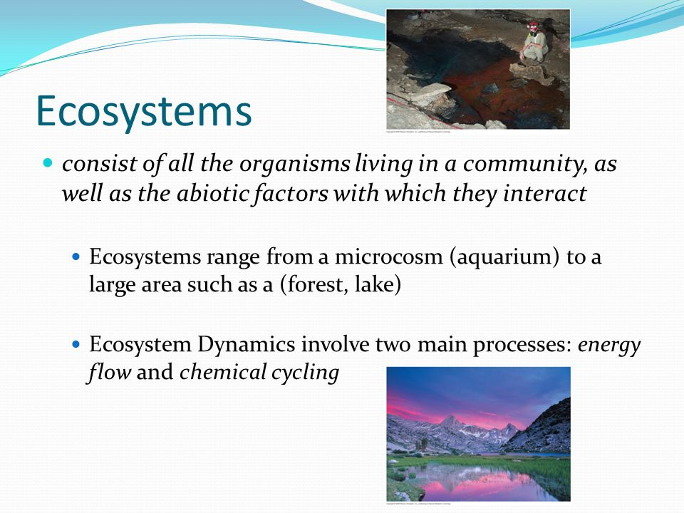 Ecosystems consist of all the organisms living in a community, as well as the abiotic factors with which they interact Ecosystems range from a microcosm (aquarium) to a large area such as a (forest, lake) Ecosystem Dynamics involve two main processes: energy flow and chemical cycling