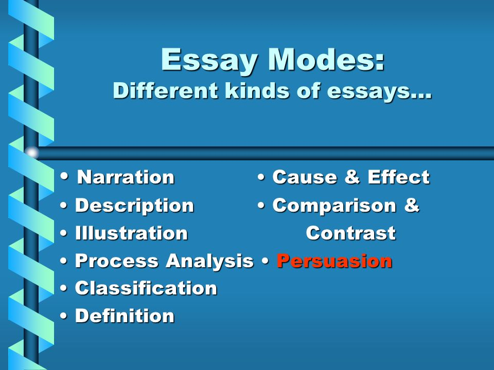 different kinds of books essay