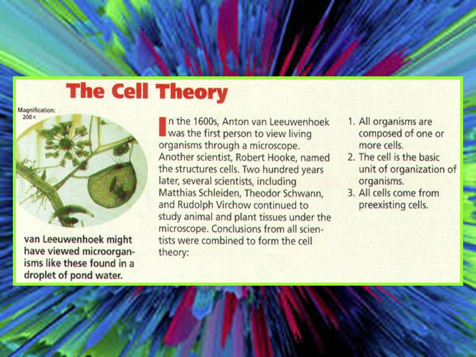 Rudolf Carl Virchow Cell Theory