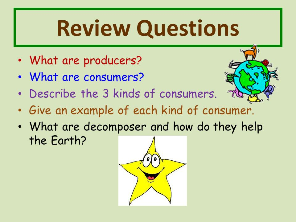 Review Questions What are producers. What are consumers.