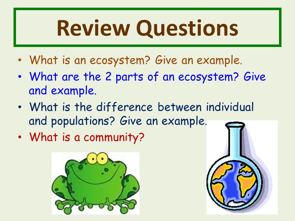Review Questions What is an ecosystem. Give an example.
