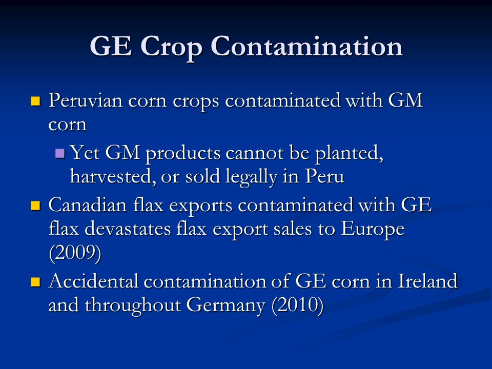 GE Crop Contamination Peruvian corn crops contaminated with GM corn Peruvian corn crops contaminated with GM corn Yet GM products cannot be planted, harvested, or sold legally in Peru Yet GM products cannot be planted, harvested, or sold legally in Peru Canadian flax exports contaminated with GE flax devastates flax export sales to Europe (2009) Canadian flax exports contaminated with GE flax devastates flax export sales to Europe (2009) Accidental contamination of GE corn in Ireland and throughout Germany (2010) Accidental contamination of GE corn in Ireland and throughout Germany (2010)