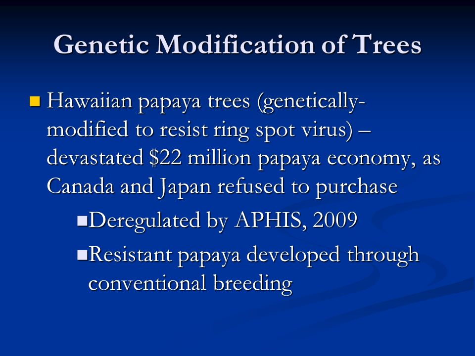 Genetic Modification of Trees Hawaiian papaya trees (genetically- modified to resist ring spot virus) – devastated $22 million papaya economy, as Canada and Japan refused to purchase Hawaiian papaya trees (genetically- modified to resist ring spot virus) – devastated $22 million papaya economy, as Canada and Japan refused to purchase Deregulated by APHIS, 2009 Deregulated by APHIS, 2009 Resistant papaya developed through conventional breeding Resistant papaya developed through conventional breeding
