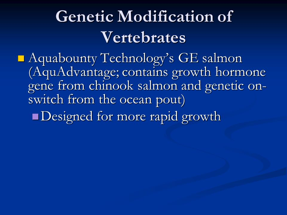 Genetic Modification of Vertebrates Aquabounty Technology's GE salmon (AquAdvantage; contains growth hormone gene from chinook salmon and genetic on- switch from the ocean pout) Aquabounty Technology's GE salmon (AquAdvantage; contains growth hormone gene from chinook salmon and genetic on- switch from the ocean pout) Designed for more rapid growth Designed for more rapid growth