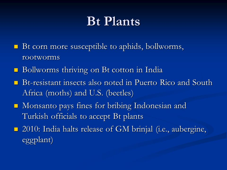 Bt Plants Bt corn more susceptible to aphids, bollworms, rootworms Bt corn more susceptible to aphids, bollworms, rootworms Bollworms thriving on Bt cotton in India Bollworms thriving on Bt cotton in India Bt-resistant insects also noted in Puerto Rico and South Africa (moths) and U.S.