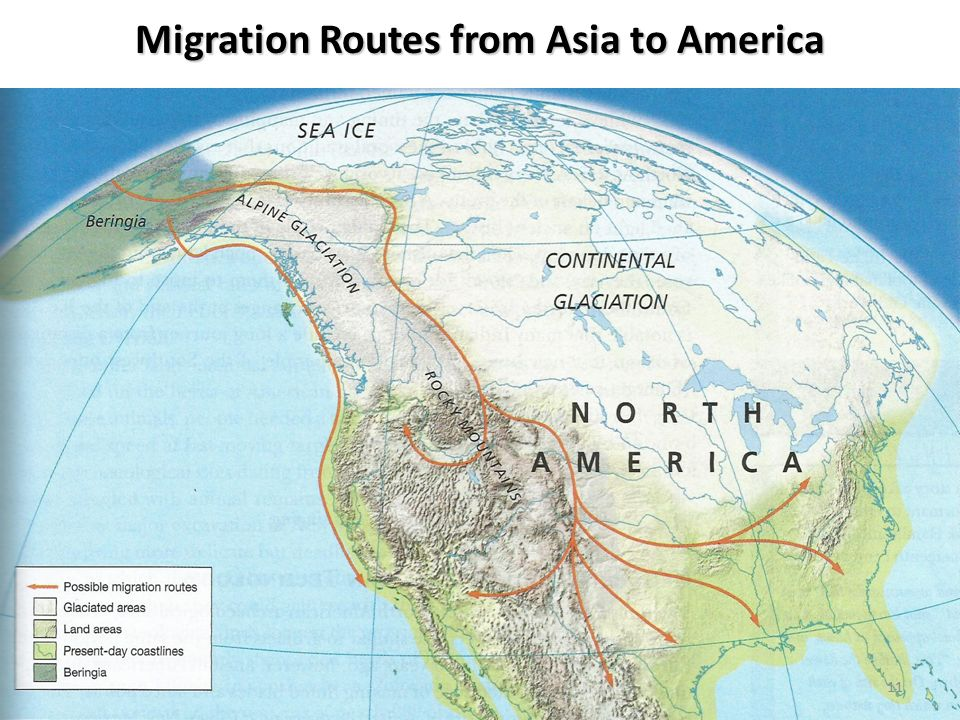 Migration Routes from Asia to America 11