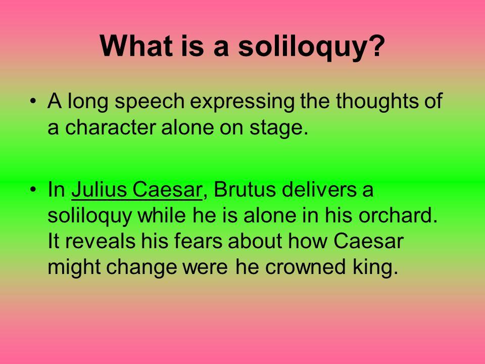 Literary Terms Julius Caesar. What is blank verse? Poetry written ...