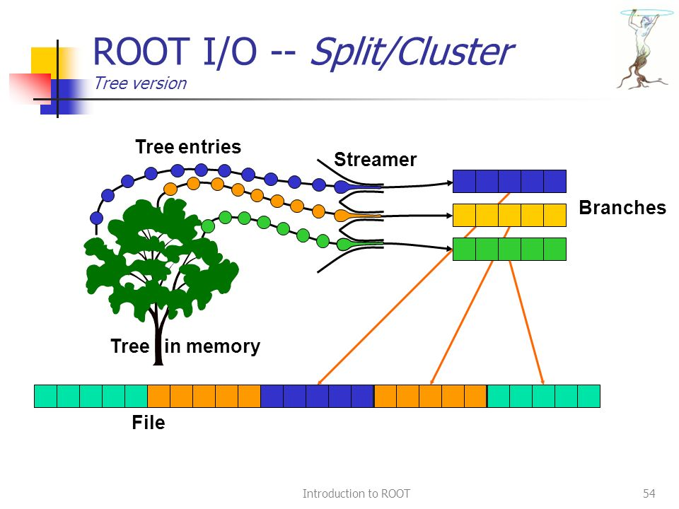 Introduction to ROOT54 ROOT I/O -- Split/Cluster Tree version Streamer File Branches Tree in memory Tree entries