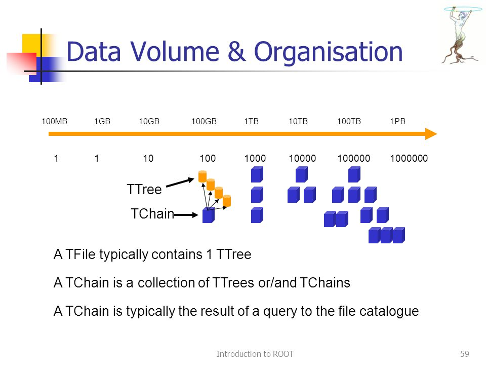 Introduction to ROOT59 Data Volume & Organisation 100MB1GB10GB1TB100GB100TB1PB10TB 1110000010000100010010 TTree TChain A TChain is a collection of TTrees or/and TChains A TFile typically contains 1 TTree A TChain is typically the result of a query to the file catalogue 1000000