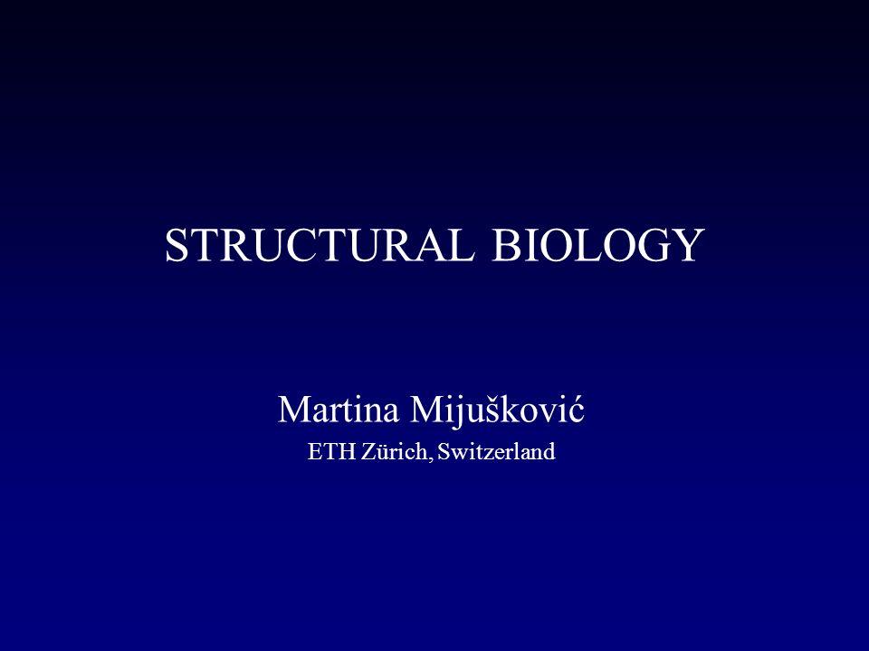 Structural biology martina mijukovi eth zrich switzerland presentation transcript 1 structural biology martina mijukovi eth zrich switzerland toneelgroepblik Image collections
