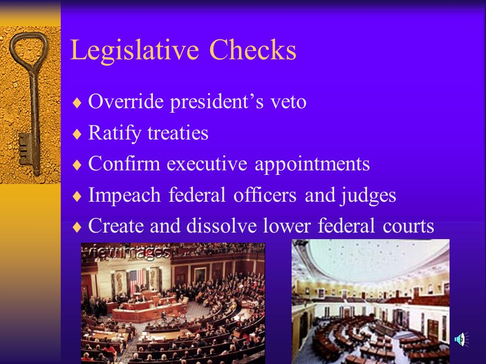 Executive Checks  Propose laws to Congress  Veto laws made by Congress  Negotiate foreign treaties  Appoint federal judges  Grant pardons to federal offenders