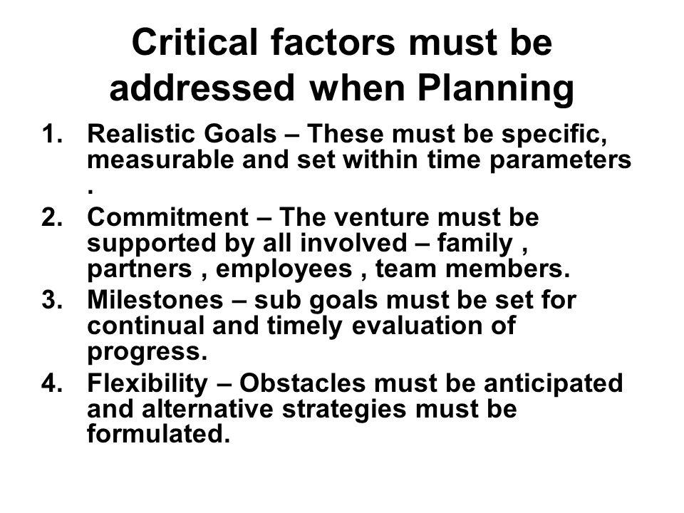 Business plan critical risks