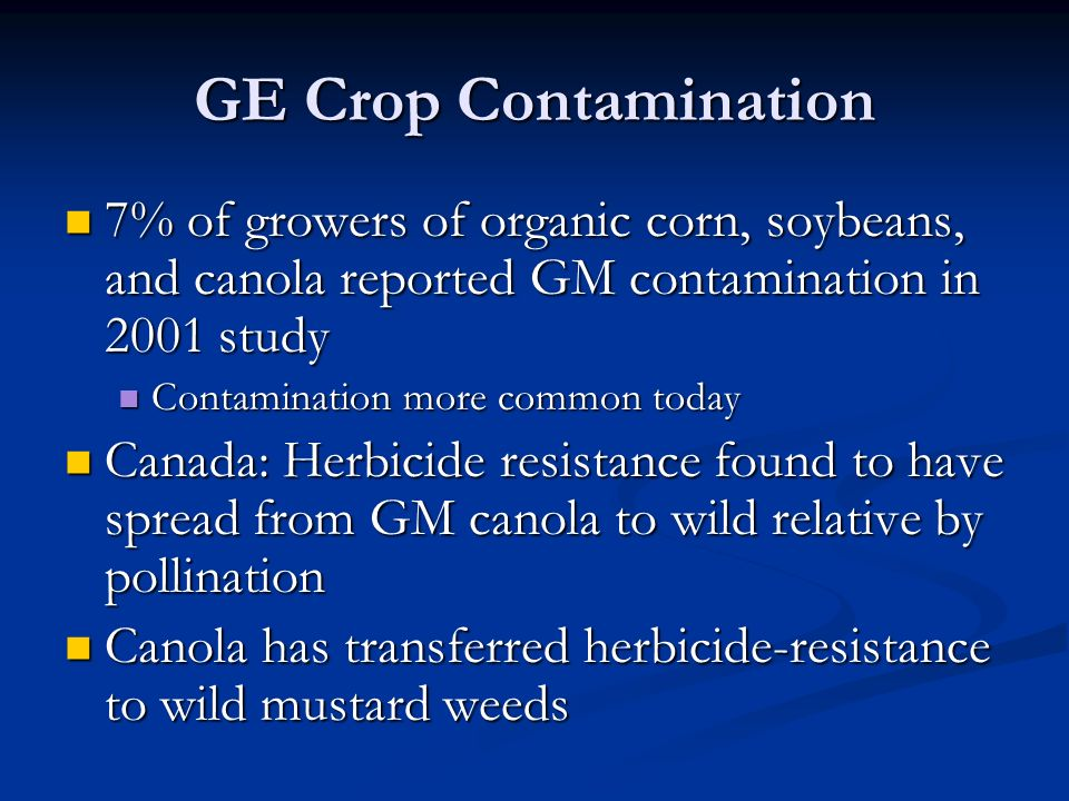 GE Crop Contamination 7% of growers of organic corn, soybeans, and canola reported GM contamination in 2001 study 7% of growers of organic corn, soybeans, and canola reported GM contamination in 2001 study Contamination more common today Contamination more common today Canada: Herbicide resistance found to have spread from GM canola to wild relative by pollination Canada: Herbicide resistance found to have spread from GM canola to wild relative by pollination Canola has transferred herbicide-resistance to wild mustard weeds Canola has transferred herbicide-resistance to wild mustard weeds