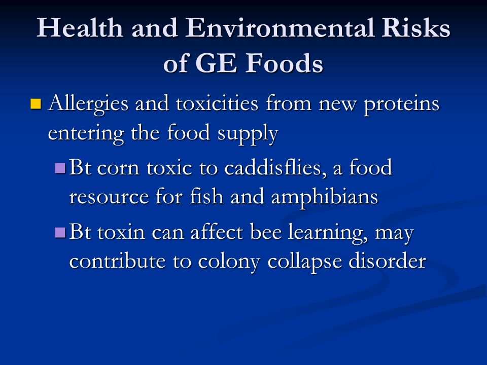 Health and Environmental Risks of GE Foods Allergies and toxicities from new proteins entering the food supply Allergies and toxicities from new proteins entering the food supply Bt corn toxic to caddisflies, a food resource for fish and amphibians Bt corn toxic to caddisflies, a food resource for fish and amphibians Bt toxin can affect bee learning, may contribute to colony collapse disorder Bt toxin can affect bee learning, may contribute to colony collapse disorder