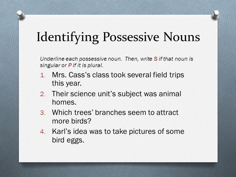 Possessive Nouns. Possession O The possessive form of a noun shows ...