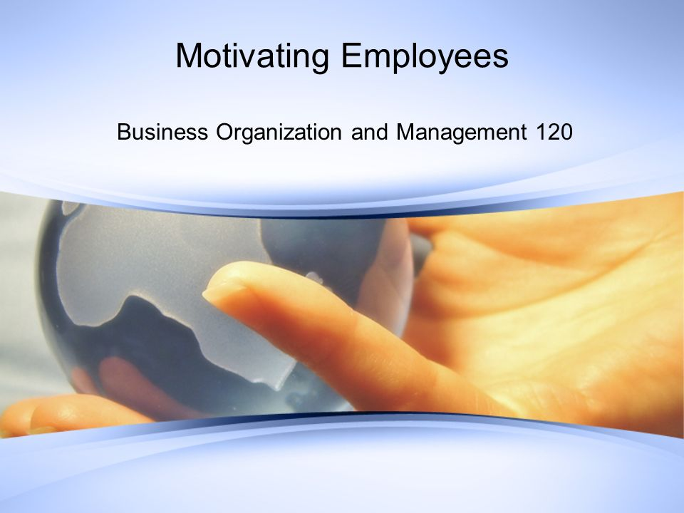 Motivating Employees Business Organization and Management 120