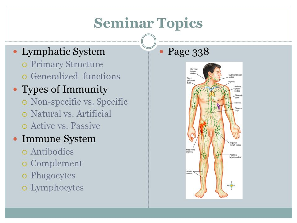 Excepcional Anatomy And Physiology Of Immune System Ppt Composición ...