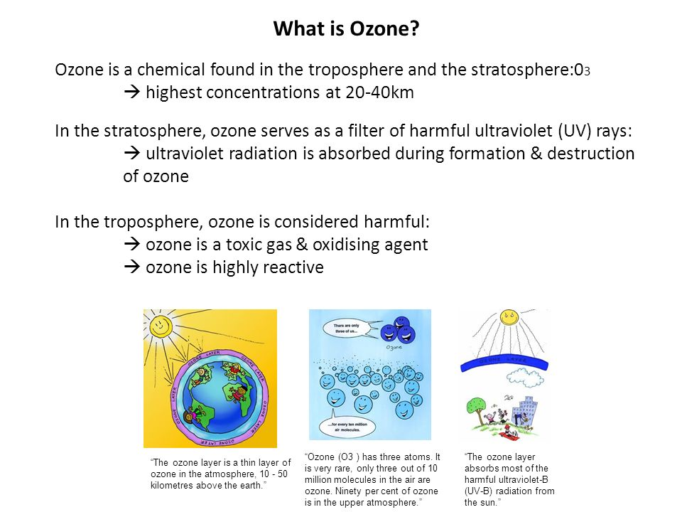 understanding the ozone and its composition Worksheet: the earth's atmosphere suffix or combining form with its english meaning 1 the ozone layer protects life from (a.