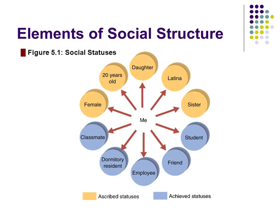 Elements of Social Structure █ Figure 5.1: Social Statuses