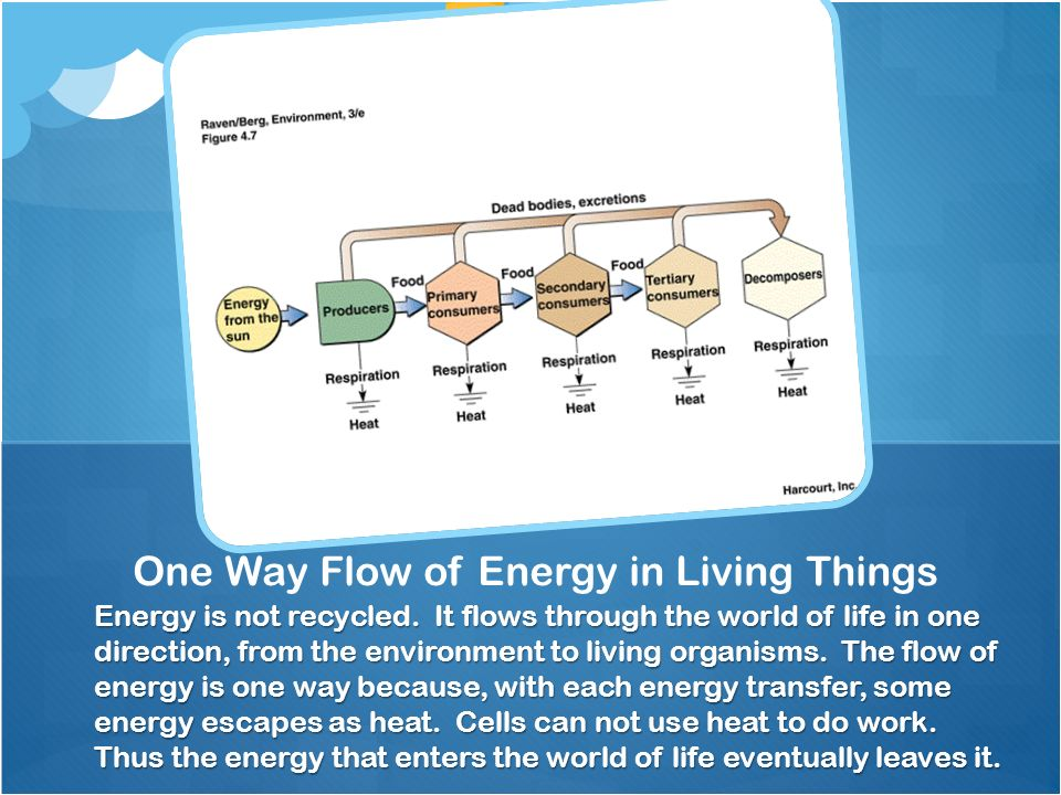 Energy is not recycled.