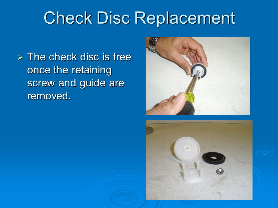 Check Disc Replacement  The check disc is free once the retaining screw and guide are removed.