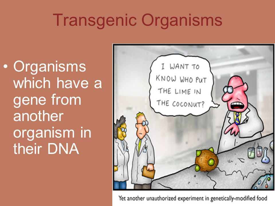 Why is genetic engineering bad?
