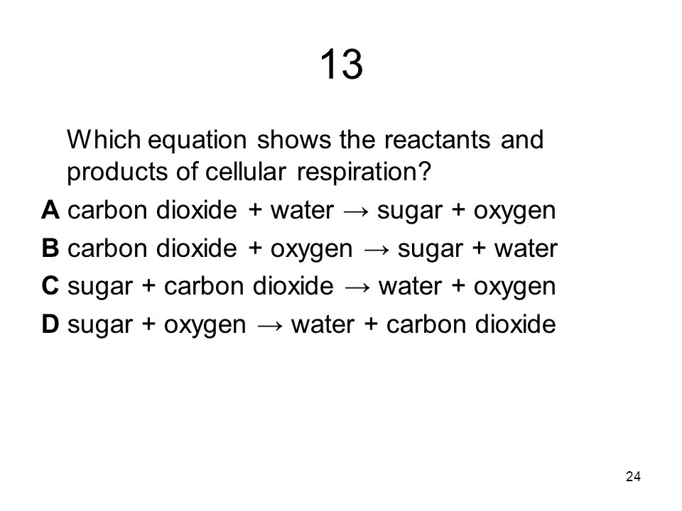 13 Which equation shows the reactants and products of cellular respiration.