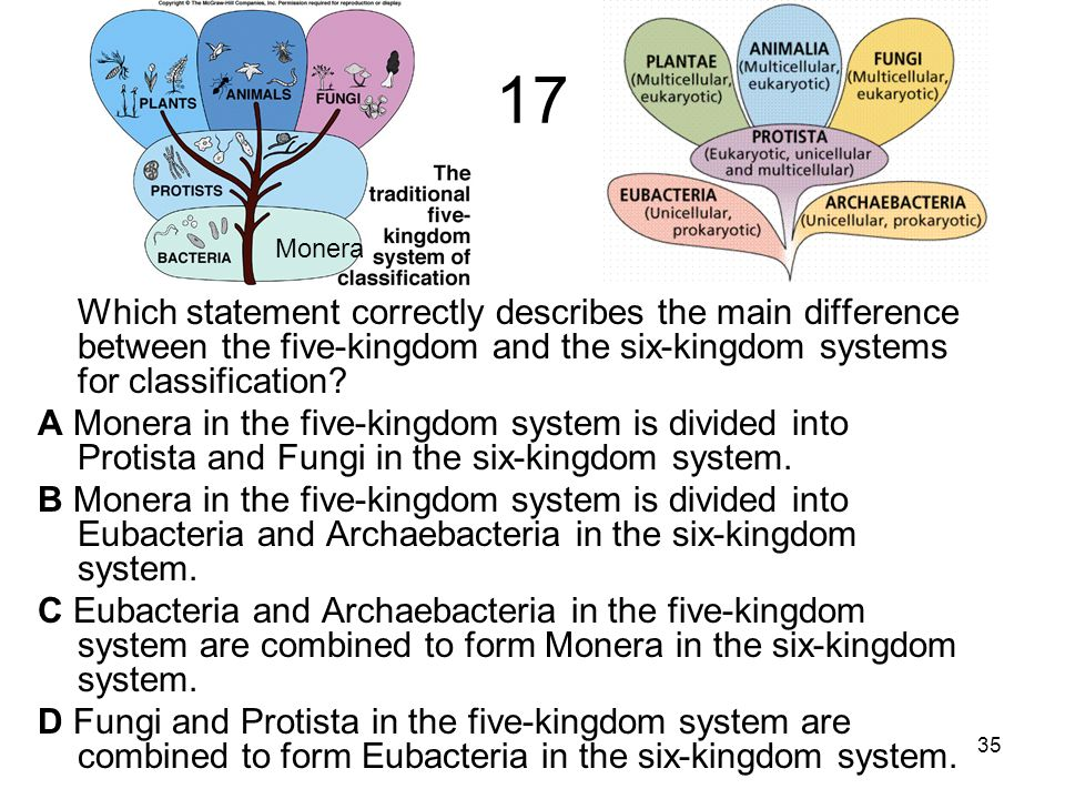 17 Which statement correctly describes the main difference between the five-kingdom and the six-kingdom systems for classification.
